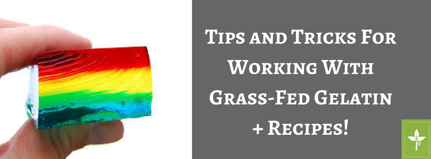 tips-and-trick-forworking-withgrass-fed-gelatin-1