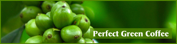 Perfect Green Coffee Dosage Side Effects